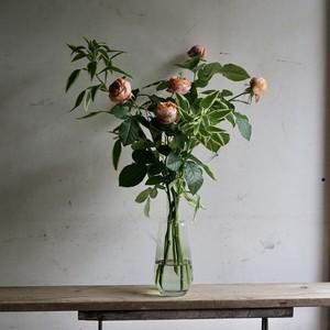 「1週間に一度のお花の定期便」2900円×6回(送料込み。北海道、九州、沖縄、四国を除く)