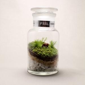 苔テラリウム 牧場 馬のいる風景 薬瓶250ml