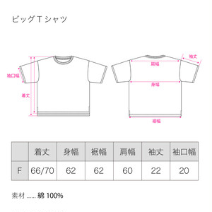 【cielkocka】ビックTシャツ
