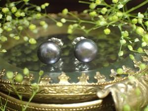 淡水パールピアス04 ネイビー
