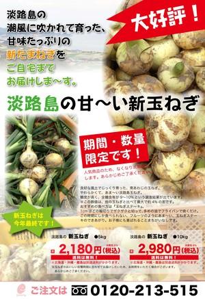 【送料込】淡路島の新たまねぎ 10Kg