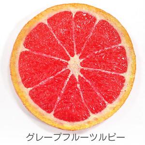 フルーツ コースター (S) 食品サンプル 【送料無料】
