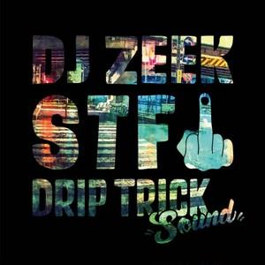 DJ ZEEK / STFU
