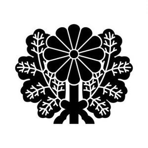 青山菊 aiデータ
