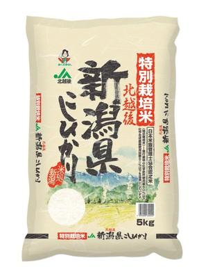 【精米】特別栽培米 北越後新潟県産 白米 こしひかり