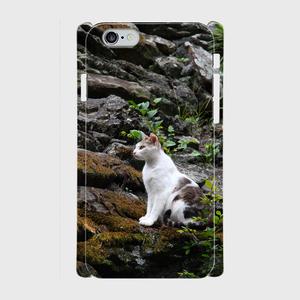 城猫 和歌山城02  iPhone7/6/6s/Android