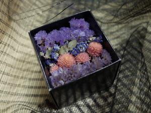 スターチス Flowerbox