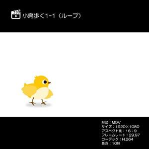小鳥歩く1-1ループ