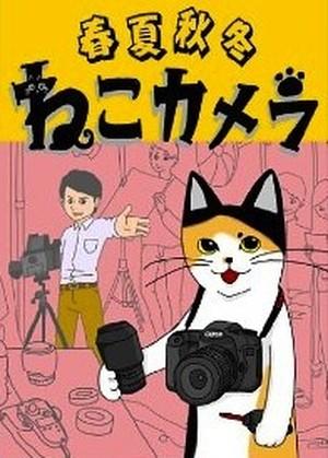 [Kindle版]第4弾「春夏秋冬 ねこカメラ」