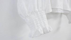 ボリュームスリーブ刺繍ブラウス レディース 韓国 オルチャン ファッション 春服 夏服 レディース トップス きれいめ カジュアル 大人可愛い ラウンドネック フリル袖 デート お出かけ 女子会 白 ホワイト レース 透け感 オシャレ