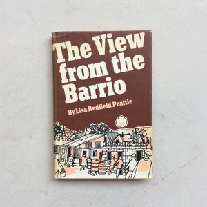 The View from the Barrio