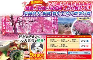 2020年3月静岡発,一度は見たい鈴鹿の森庭園のしだれ梅と東海最大の梅林観賞と人気店「茶茶」の自然薯料理日帰りバスツアー9480円