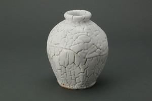 花瓶(G)