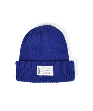 Twofold Beanie / D.BLUE