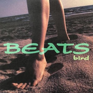 bird - Beats (12inch) DJ Watarai Beats 収録 [j-rb] [jpo] 試聴 fps19123-4