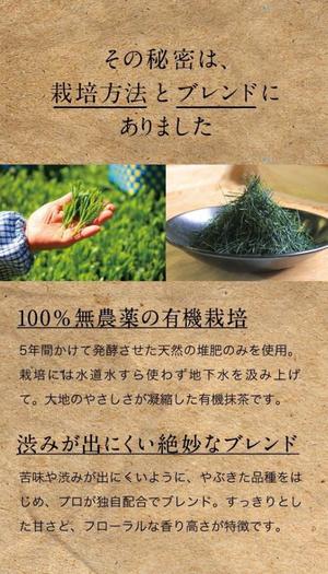 オーガニック緑茶 煎茶 ティーバッグ 30袋セット 農薬不使用 化学肥料不使用  敬老の日 お歳暮ギフト プレゼント 誕生日 大人向け