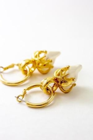 piercingStarfishBRASS.Gold Corting