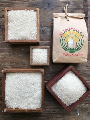 自然栽培米20kg「ひのひかり・きぬむすめ」(玄米/5分/7分/白米)