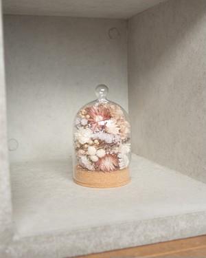 cork glass dome #1