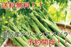北海道 奥尻産 グリーンアスパラ L~2Lサイズ1kg (500g×2)【冷蔵]