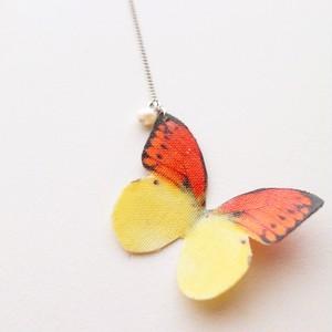 蝶々-ヒイロツマベニ-