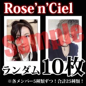 【チェキ・ランダム10枚】Rose'n'Ciel