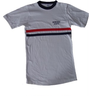 70's Champion GENESEO STATE RINGER T-Shirts(白)