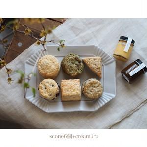 《抽選販売》scone box(3/25発送)
