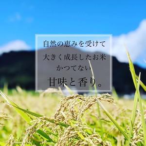 大自然米【3kg】無洗米