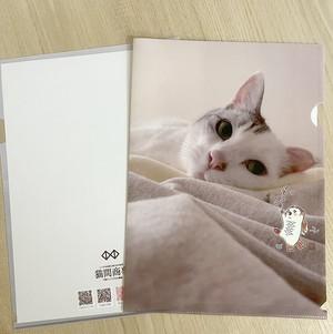 猫間商事名入りA4クリアファイル