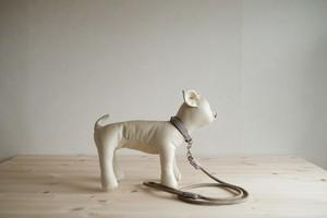 ライトグレーの牛革を使った小型犬用の首輪とリードのセット