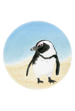 名取千春 クリアファイル(A5) 楽園ペンギンシリーズNo.9