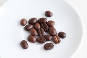 特別ないつものコーヒー「ガルーダブレンド」200g