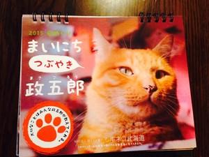 まいにち つぶやき 政五郎 日めくりカレンダー