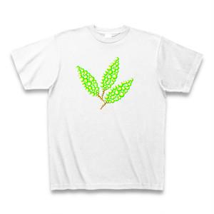 leaf no.2