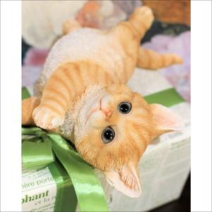 アメリカンショートヘア ネコオブジェ B 4type 猫置物  ネコ雑貨/浜松雑貨屋C0pernicus