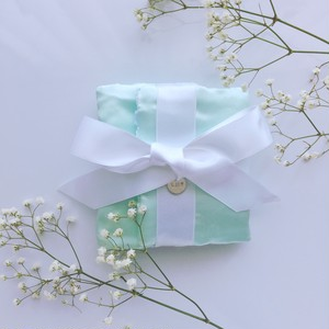 lis belle ×rinaluna Accessory Pouch - Present - My lily lady model  Color mint