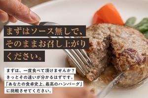 ひと味惚れハンバーグ 2枚【定期便】3か月コース