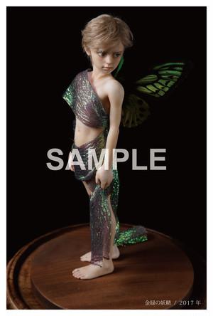 【限定】フォトカード「金緑の妖精」A