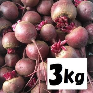 無農薬農家直送ビーツ 赤:3kg(東北~関西地域配送料込み!)