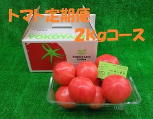 ファーストトマト2kg入り定期便