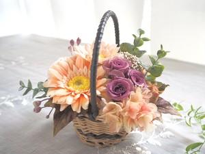 Panier de mauve Antique  * ガーベラの花かご ナチュラルアレンジ プリザーブドフラワー 花
