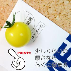 ミニトマト マグネット 食品サンプル