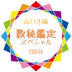 120分でスッキリ!人生のトリセツ/スペシャル数秘鑑定