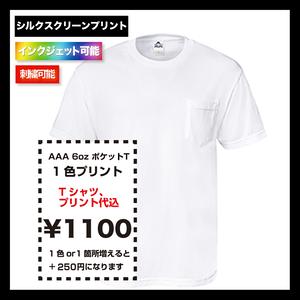 ALSTYLE (AAA) アルスタイル 6oz ポケット Tシャツ (品番1305)