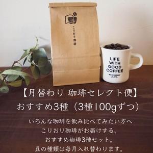 【11月 珈琲セレクト便】おすすめ3種(3種100gずつ)