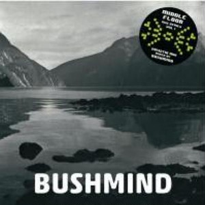 BUSHMIND | 2013 DTW Mix