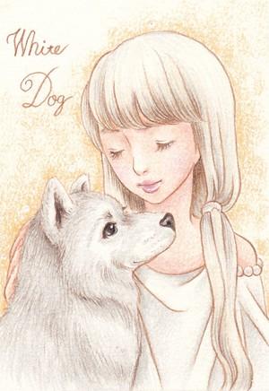 白い犬女の子のハガキ