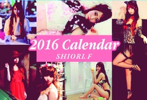 2016年度 藤井しおり 卓上カレンダー