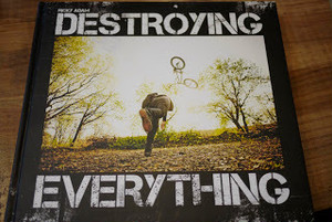DESTROYING EVERYTHING …SEEMS LIKE THE ONLY OPTION